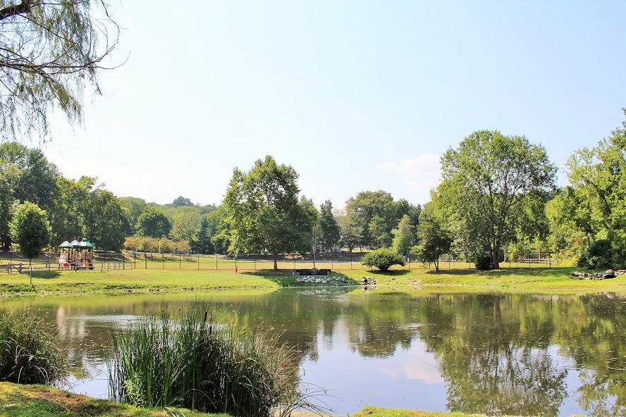 Leith's Pond and Carroll Park