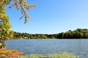 Lake Lincolndale